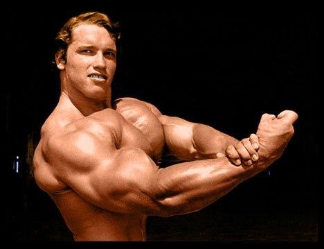 Los 5 Mejores Ejercicios Para Aumentar Tus Brazos (Bíceps, Tríceps ...