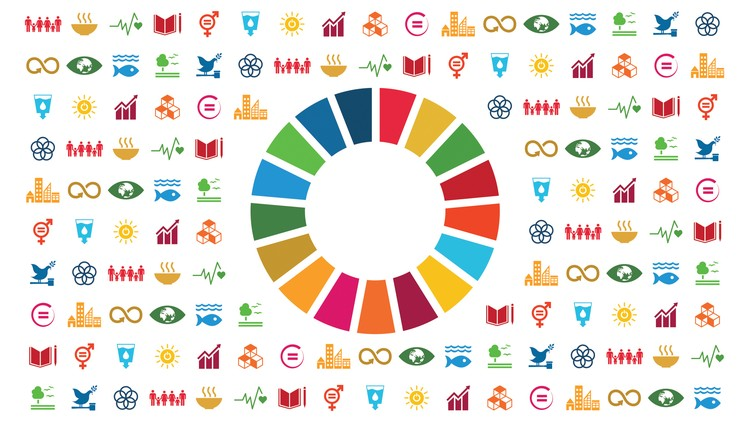 Introduction to Sustainable Development Goals (SDGs) - Udemy Course