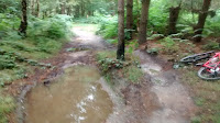 Watch that puddle and trees, the kitchener trail- by: © Paul c Walton