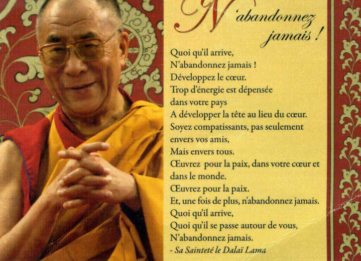 Célèbre Citations option bonheur: Panneau de citation du Dalaï Lama VS56