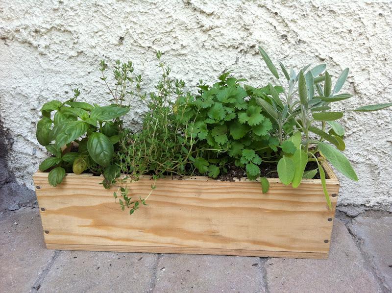 Meremade Diy Wine Box Herb Garden