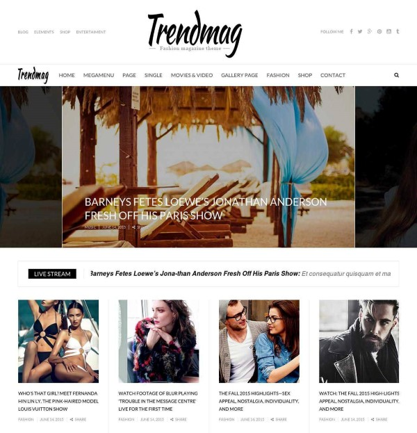 TrendMag Wp theme for online publishers