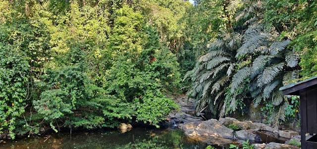Tabin Wildlife Resort @ Lahad Datu Sabah