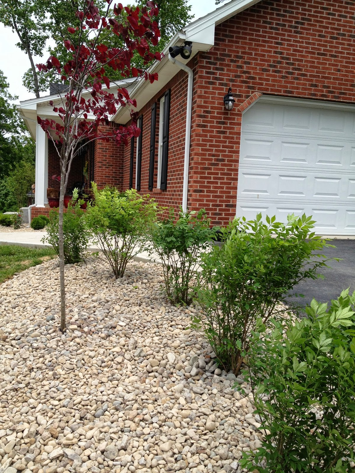In the beginning no landscaping my kentucky living - Smooth stones for landscaping ...