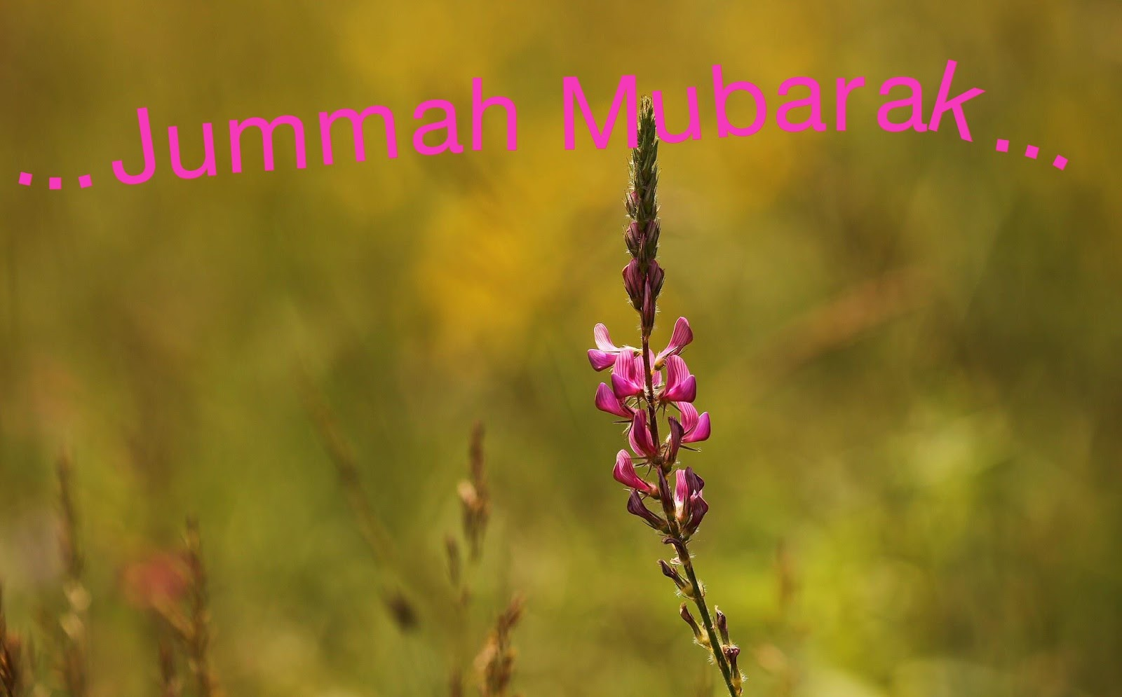 Jumma Mubarak Messages Beautiful Messages