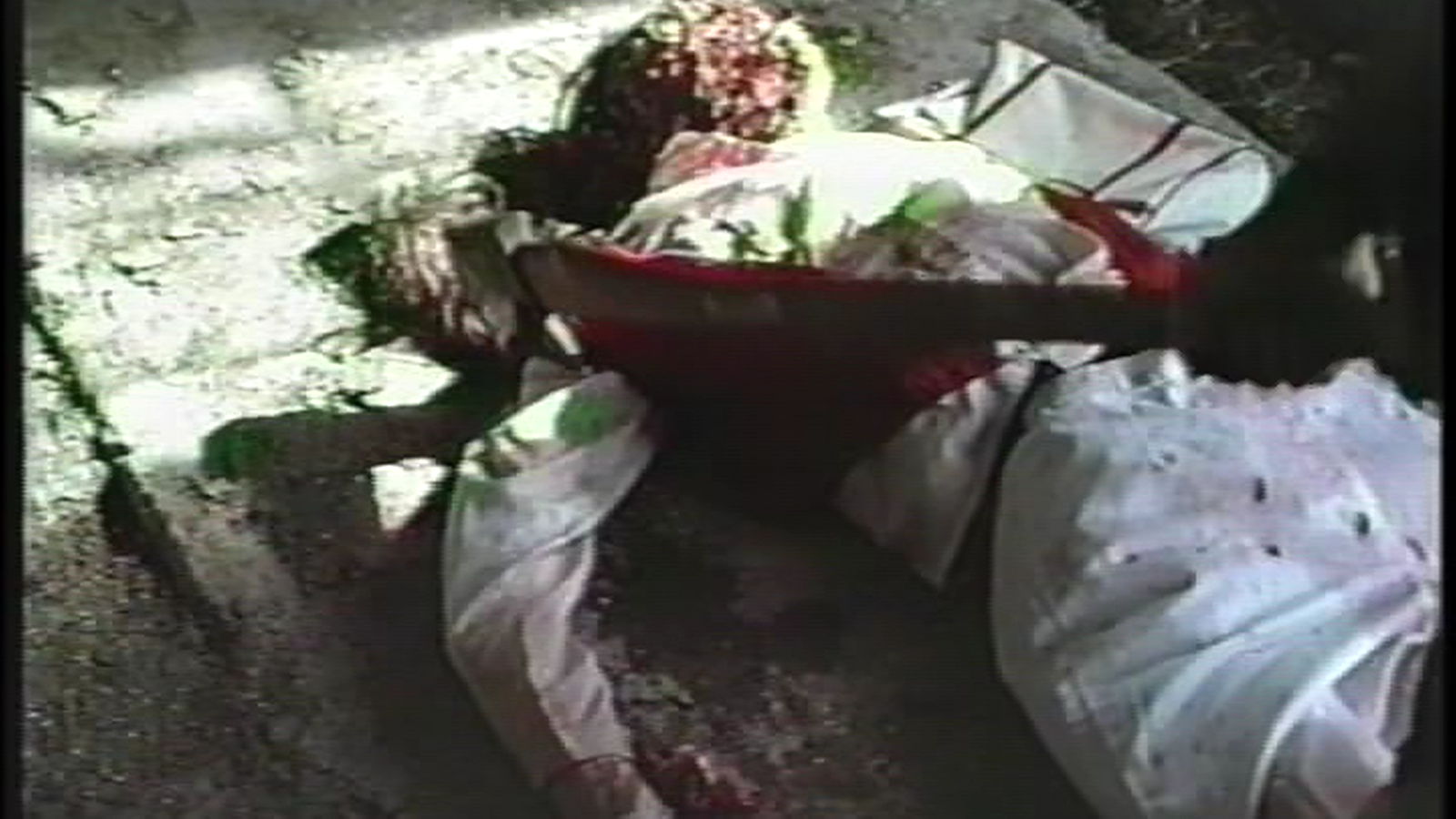 From Black to Red: Splatter Farm (1987)