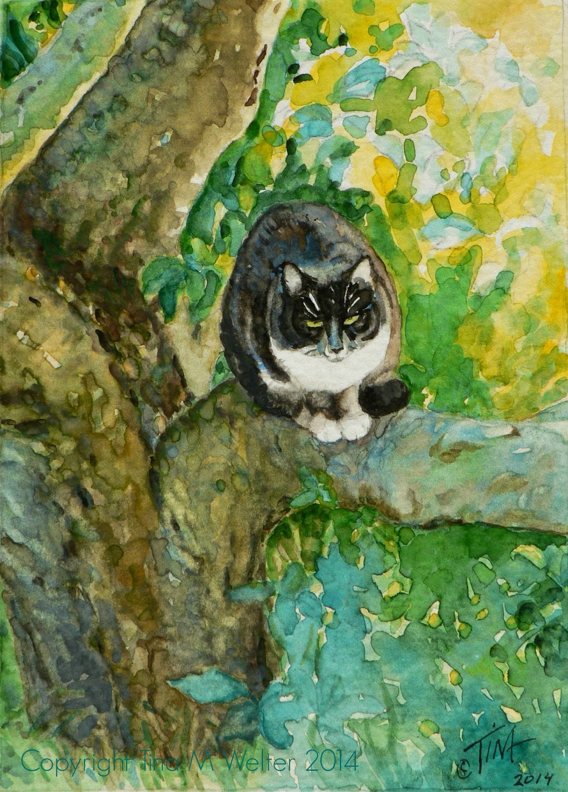 Original watercolor painting by Tina M Welter of a black and white cat sitting in an apple tree in Dresden, Germany.