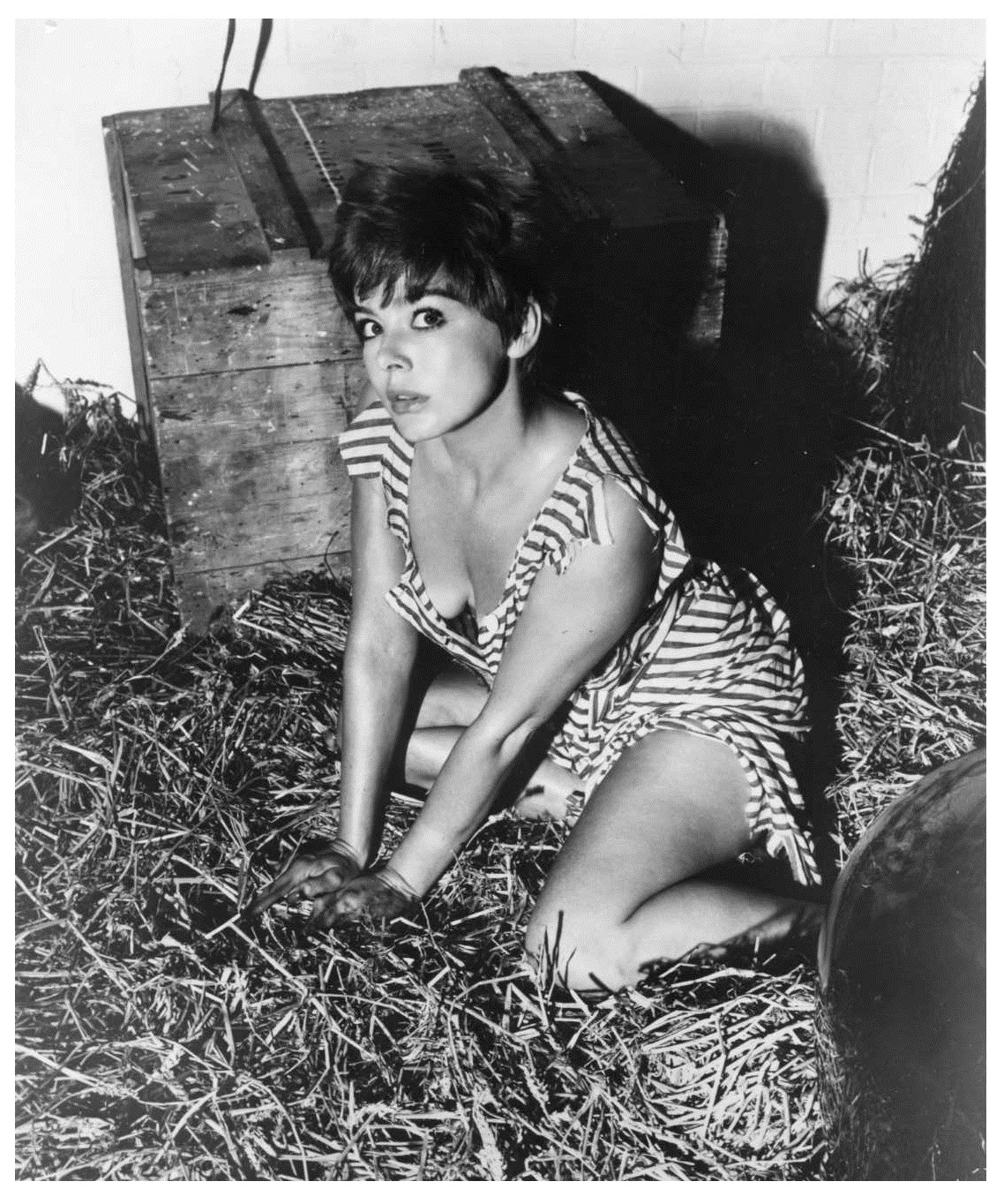 Janet Munro in The Day the Earth Caught Fire. 1961   Munro