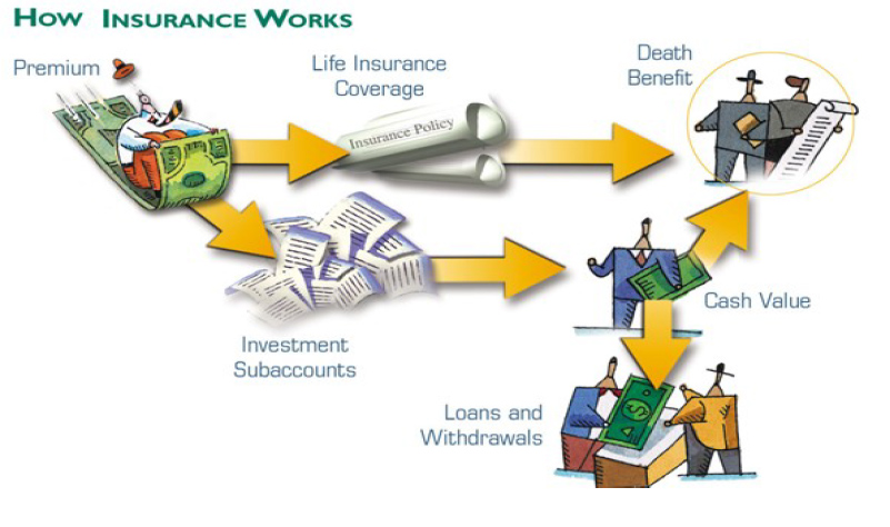 How an Insurance Policy Works | Insurance | Life Insurance