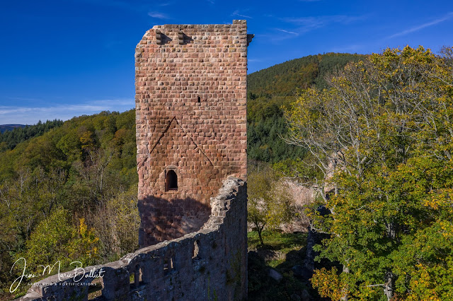 Château du Landsberg — Donjon