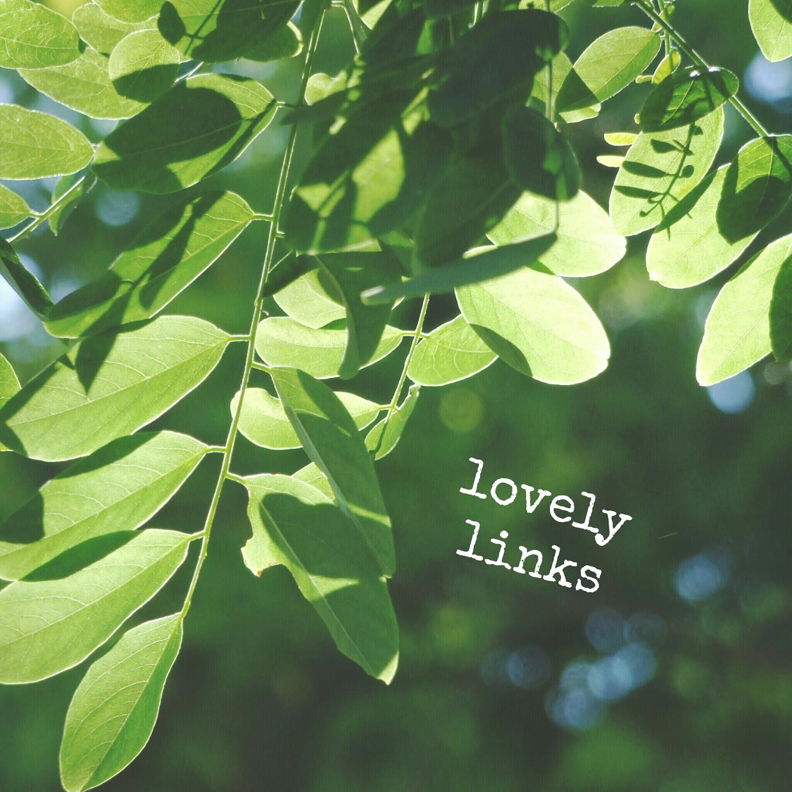 Lovely Links 06