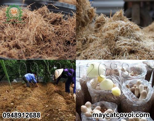 Máy băm vỏ dừa, rơm rạ, ván bóc 3A3Kw sản xuất nguyên liệu trồng nấm, ủ phân hữu cơ