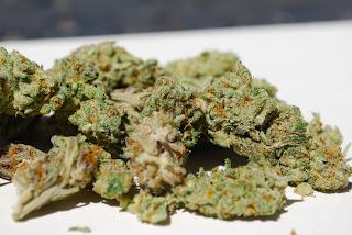 Calabasas Cannabis Delivery Service