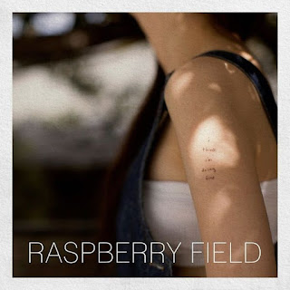 Raspberry Field - Thirty Something (Feat. Jimmy Lee) Lyrics