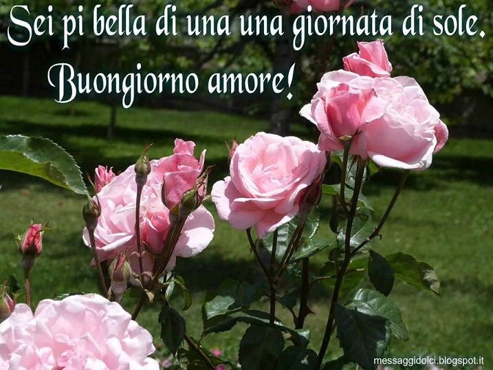 Buongiorno amore immagini for Buongiorno buon sabato immagini