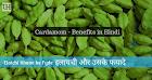 Elaichi Khane Ke Fyade - Cardamom Benefits in Health Hindi me
