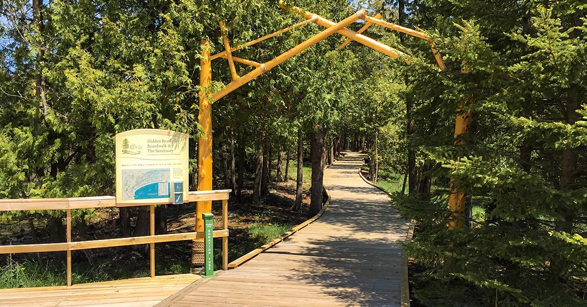 Ridges Sanctuary Boardwalk in Baileyu0027s Harbor Door County WI & Wisconsin Explorer: Hiking at Ridges Sanctuary in Door County pezcame.com