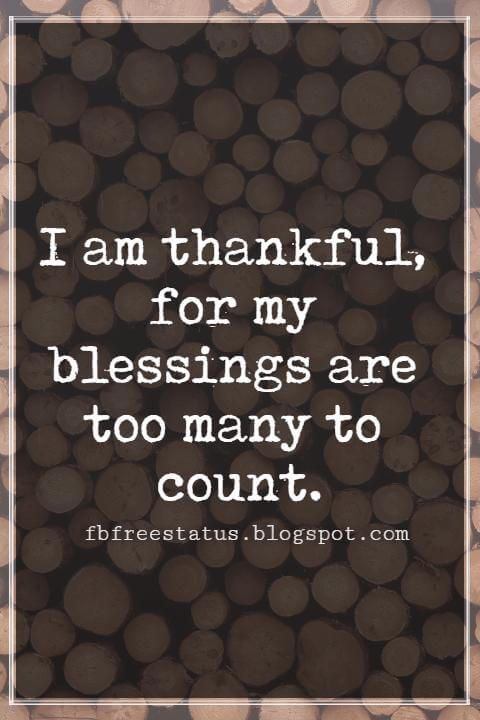 Inspirational Quotes For Thanksgiving, I am thankful, for my blessings are too many to count.