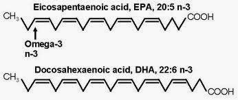 Medicine Newbie: Revision: Lipid Metabolism 1 July 2014