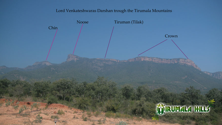 Tirumala Hills Side View Look A Like Face Pictures Of Lord