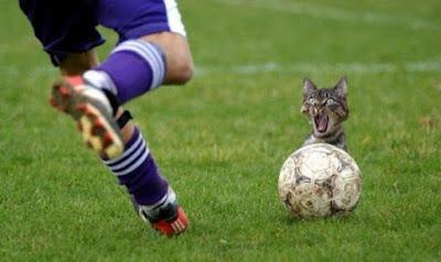 gambar sepak bola lucu gratis