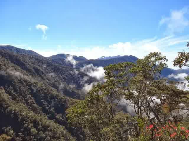 7 Gunung Tertinggi Di Aceh Slow Indonesia
