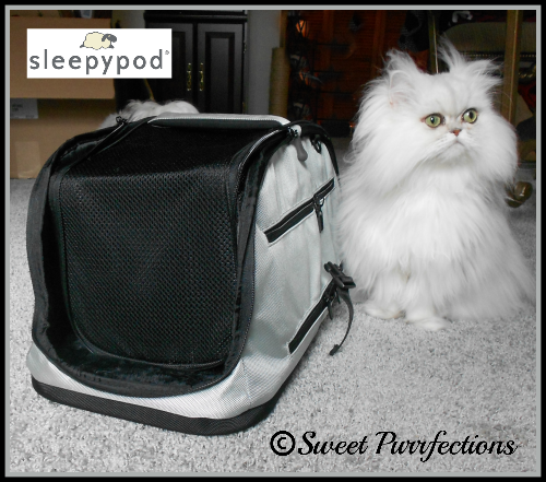 Brulee thinks the Sleepypod® Air is as beautiful as she is.