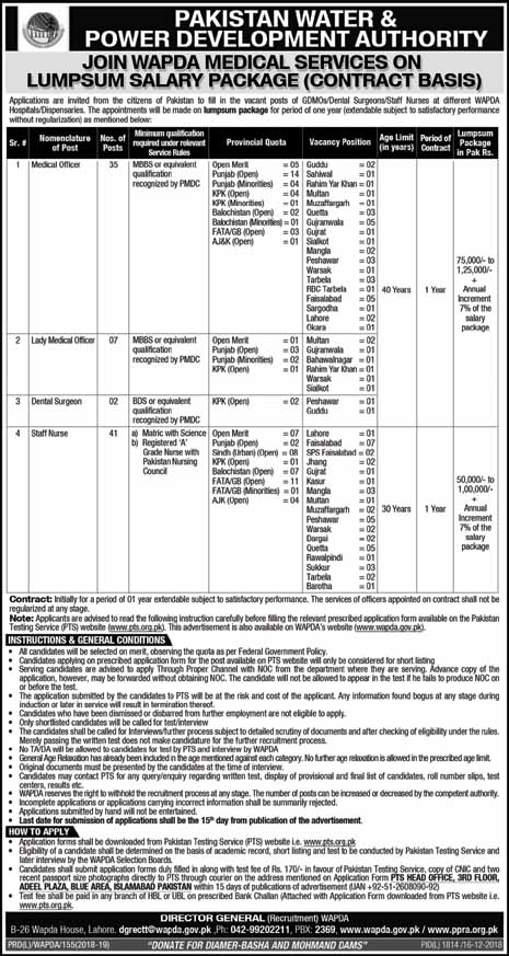 Jobs in Wapda Decmber 2018 Through PTS