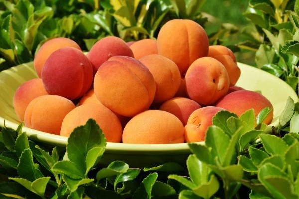 50 Alimentos Para Mejorar Salud y Vida De Tu Familia