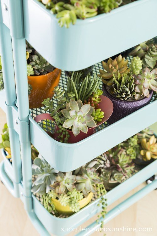 12 Ikea Hacks For Gorgeous Succulent Gardens Do It Yourself Ideas And Projects