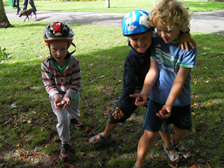 collecting conkers in autumn