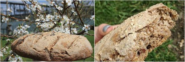 Рецепта за пълнозърнест хляб с орехи