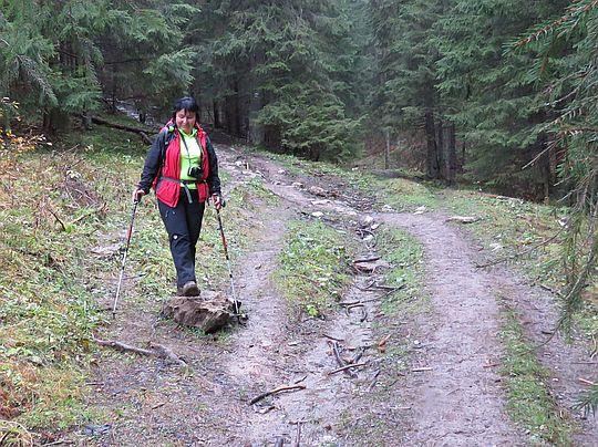 Zejście z Kominiarskiej Przełęczy.