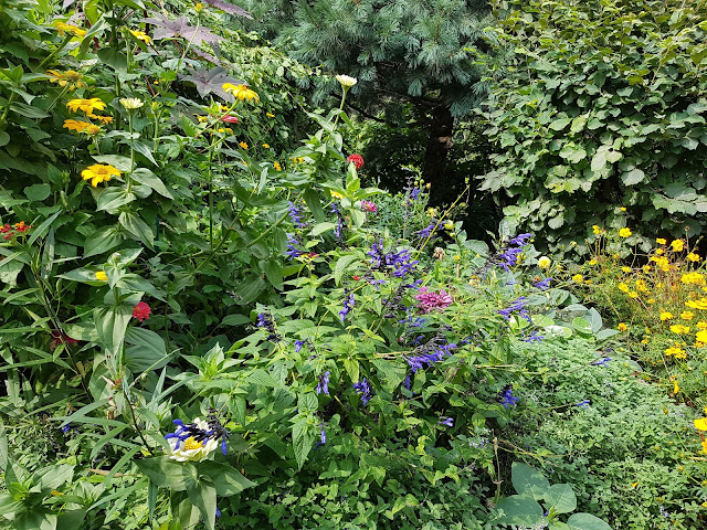 cottage garden NYC