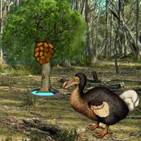 Wowescape Dodo Bird Evolu…