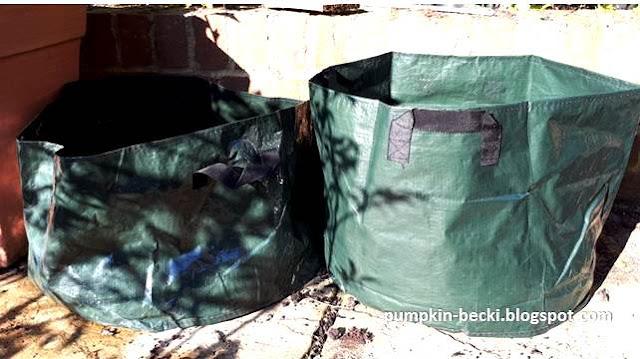 Wilkinsons Vegetable Grow Bags planting