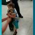 Vídeo mostra alegria de menino de 3 anos ao reencontrar cadela furtada, assista