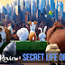 Movie Review: Secret Life of Pets