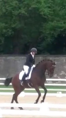 Hunting for my (dressage) Horse