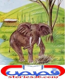 قصص اطفال قيل النوم | قصة القبرة والفيل