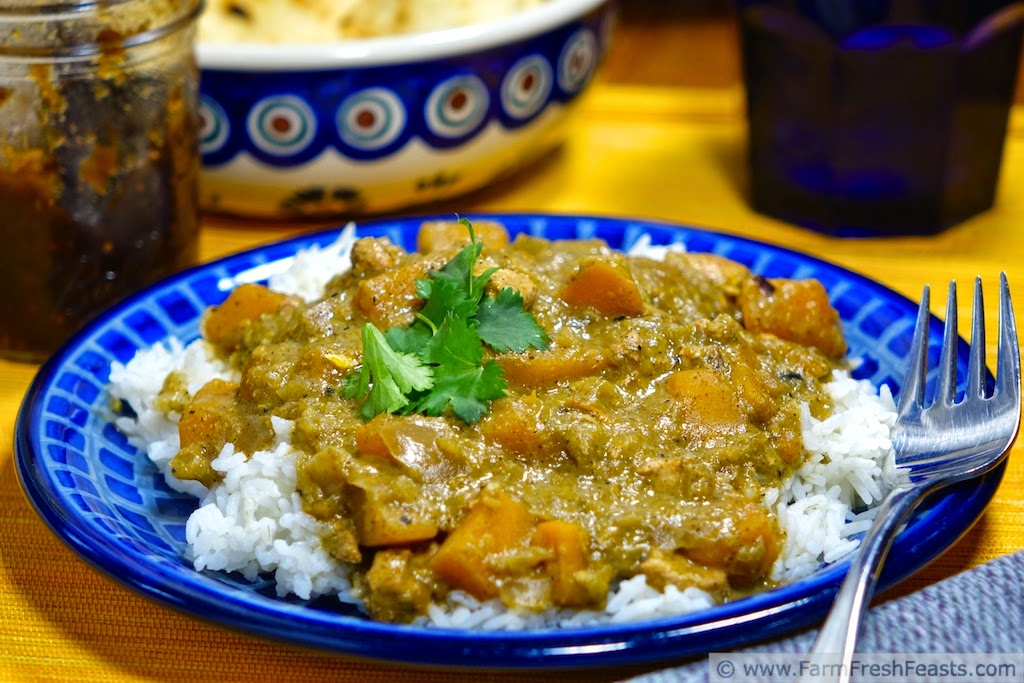 photo of a plate of green tomato curry with butternut squash and chicken, served over rice