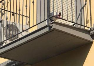 Ιδιοκτήτης παράτησε τον σκύλο του στο μπαλκόνι μέσα στη ζέστη με κλειστά τα παράθυρα