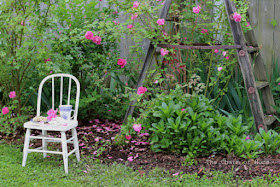 Brambly rose garden: The Charm of Home