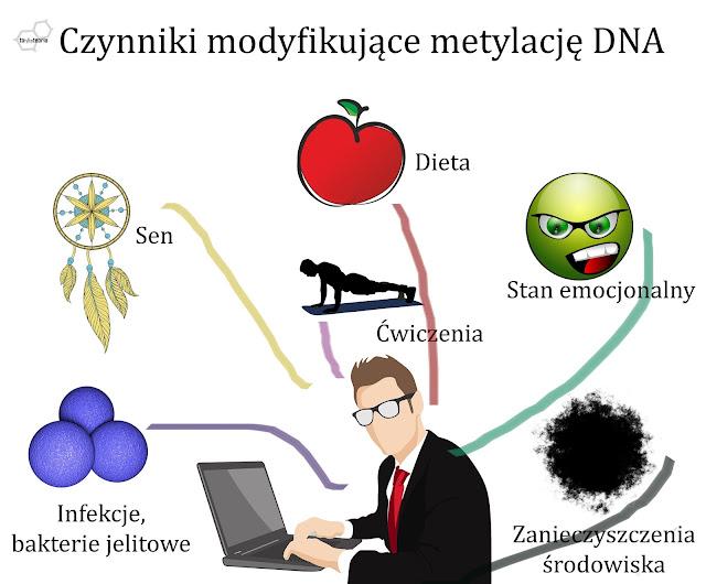 programowanie epigenetyczne