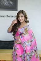 Angela Krislinzki Rogue Movie Fame Telugu Actress in Saree Backless Choli 080.JPG