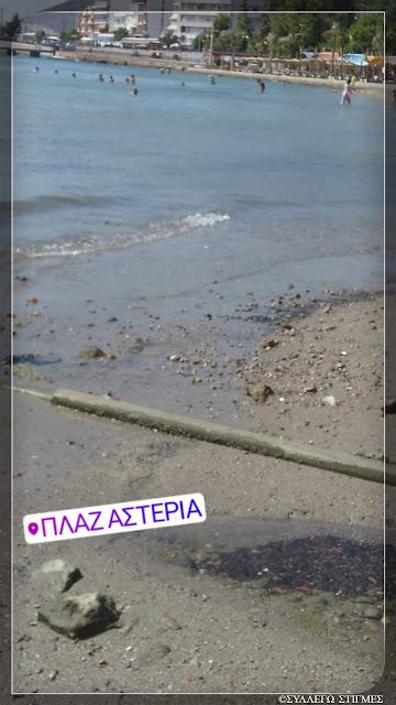 ΠΛΑΖ ΑΣΤΕΡΙΑ, Χαλκίδα