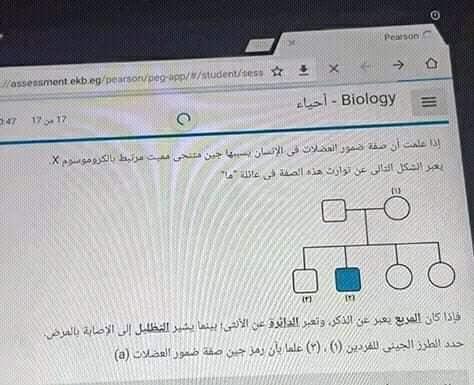 تحميل امتحان الاحياء مارس تجريبي تابلت 2019