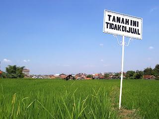 Apa Itu Tanah Girik Prosedur Hukum Pendaftaran Tanah Pertama Kali Status SHM