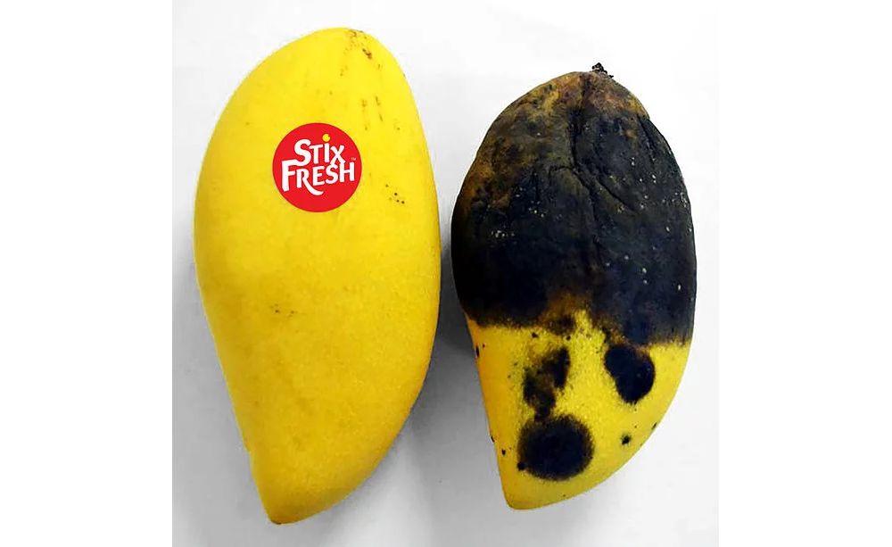 Stixfresh untuk membuat buah tahan lama dan anti busuk (odditycentral.com)