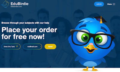 EduBirdie review